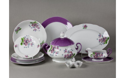 Сервиз столовый 25 предм. 03162011-2391 Мэри-Энн Лиловые цветы, Leander